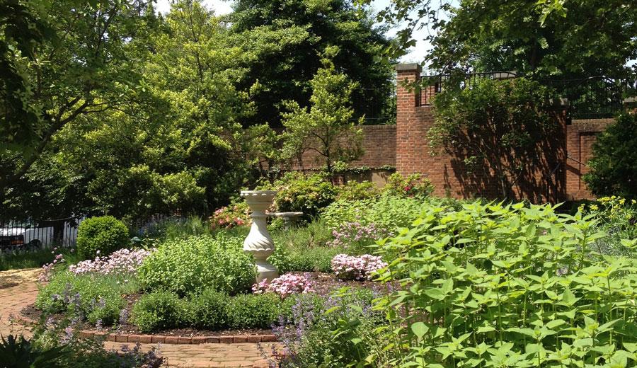 Dumbarton-House-Gardens